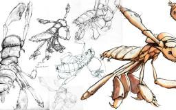 Salsa Invertebraxa - Early Moetre sketches
