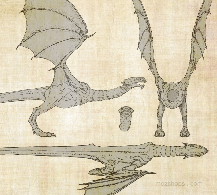 wyvern-tpose-orthographic-by-mozchops