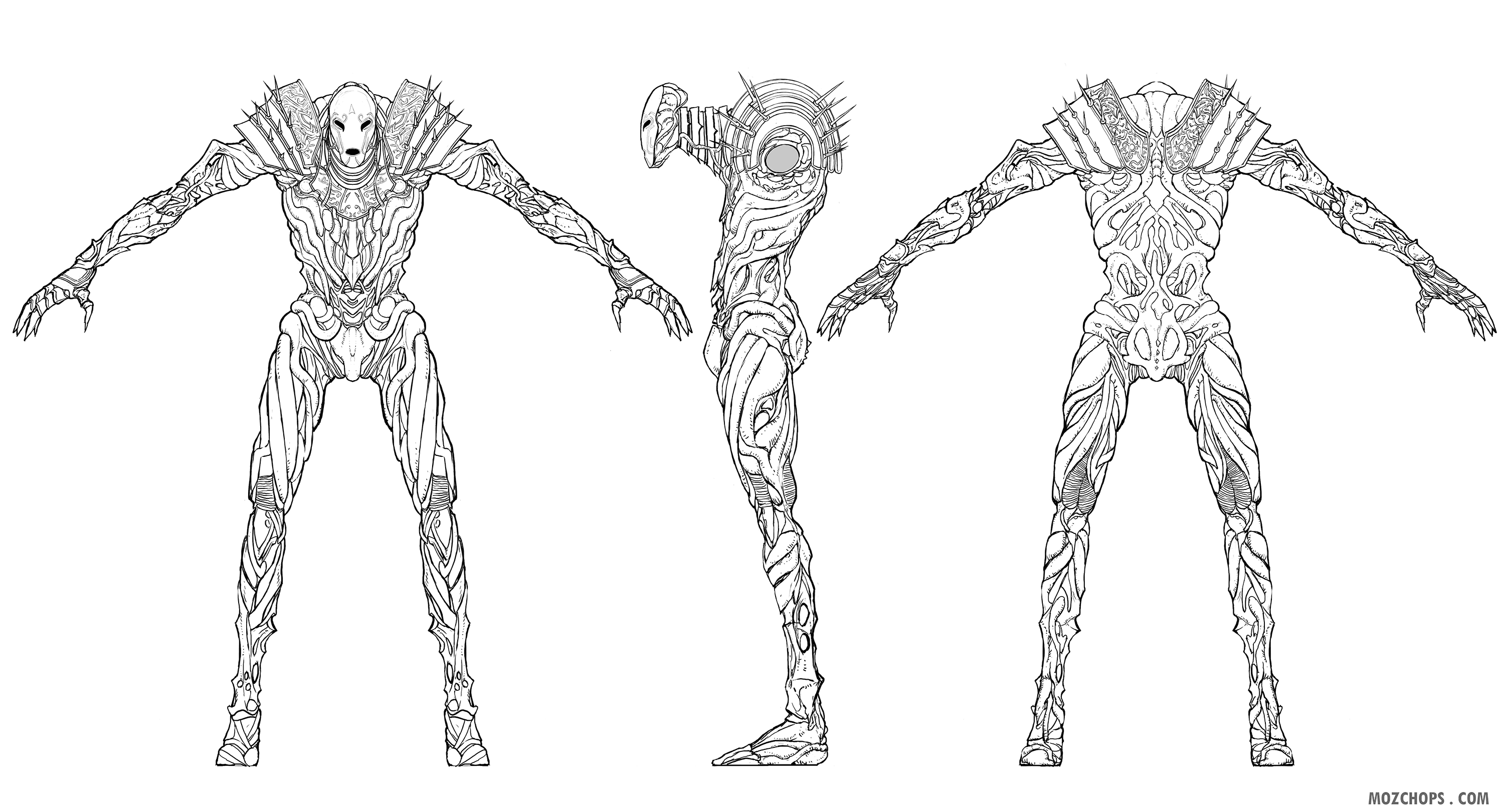 strider-elite-turnaround-10