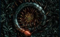 Salsa Invertebraxa - Queen Centipette