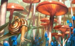 Prophets of the Ghost Ants - Mushroom Landscape